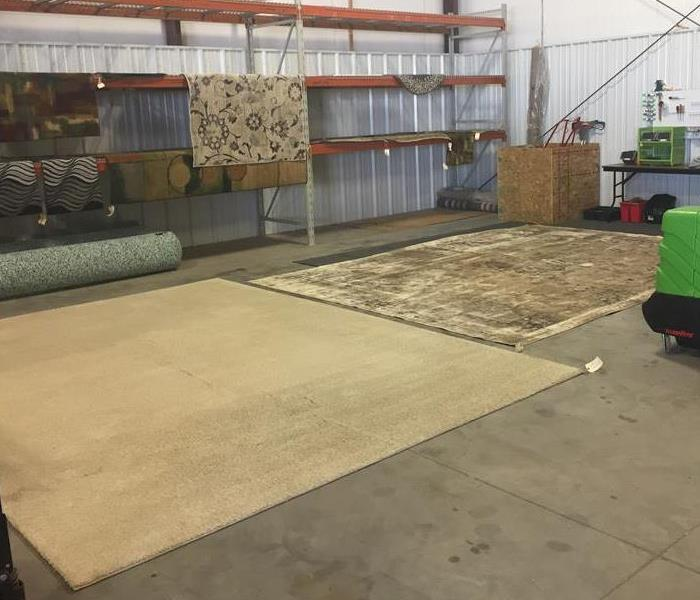 Mold on Flooring Rugs