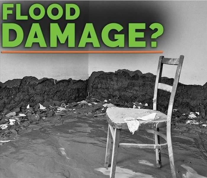 Black and white image with a chair in the middle of a flooded room. There's a message in green that says flooded damage?