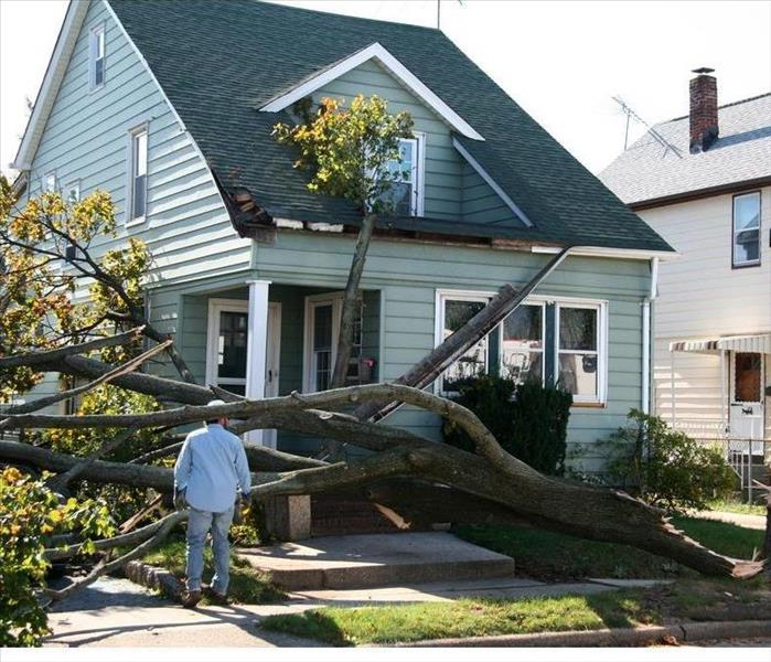 Storm Damage 6 Shutter Styles You May Need for Your Home